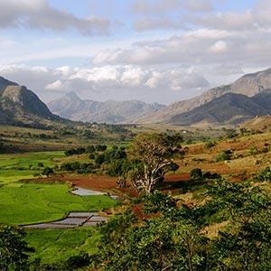 Sur la route de Madagascar