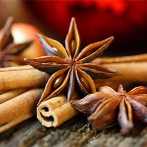 Épices et sapin pour votre santé du temps des fêtes