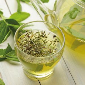 Le thé pour favoriser  la concentration  et la perte de poids