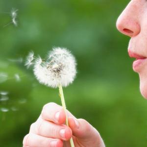 Pourquoi y a-t-il de plus en plus d'allergies?
