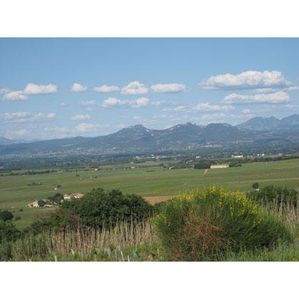 Lirac - une appellation de la vallée du Rhône